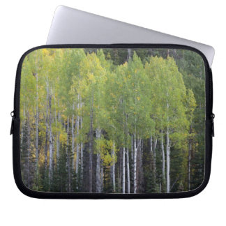Provo River and aspen trees 2 Laptop Sleeve