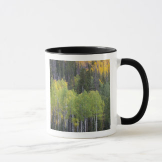 Provo River and aspen trees 2 Mug