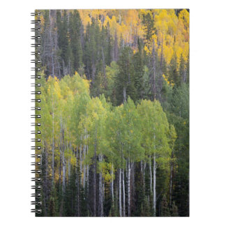 Provo River and aspen trees 2 Notebooks