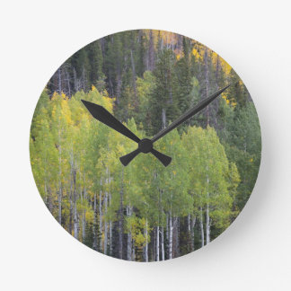 Provo River and aspen trees 2 Round Clock