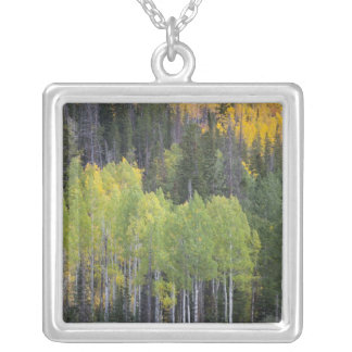 Provo River and aspen trees 2 Silver Plated Necklace