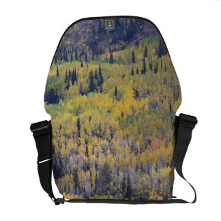Provo River and aspen trees 3 Courier Bag