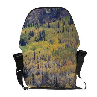 Provo River and aspen trees 3 Messenger Bag