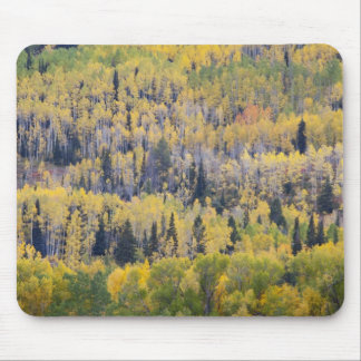 Provo River and aspen trees 3 Mouse Mat