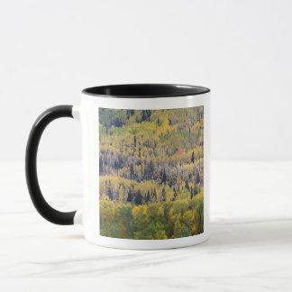 Provo River and aspen trees 3 Mug