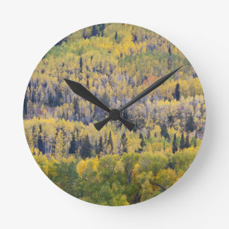 Provo River and aspen trees 3 Round Clock