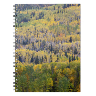 Provo River and aspen trees 3 Spiral Notebook