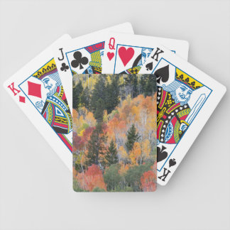 Provo River and aspen trees 4 Bicycle Playing Cards