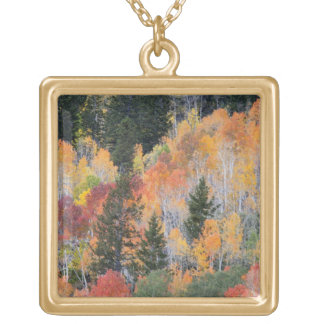 Provo River and aspen trees 4 Gold Plated Necklace