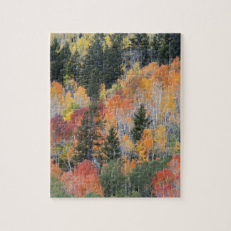 Provo River and aspen trees 4 Jigsaw Puzzle