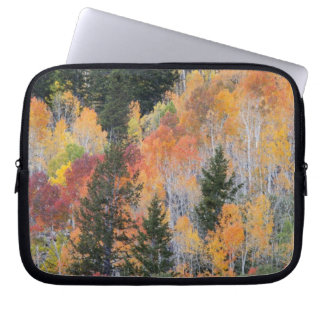 Provo River and aspen trees 4 Laptop Sleeve