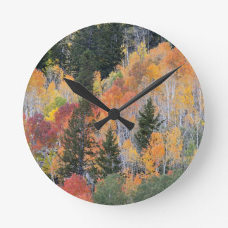 Provo River and aspen trees 4 Round Clock