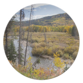 Provo River and aspen trees 5 Plate