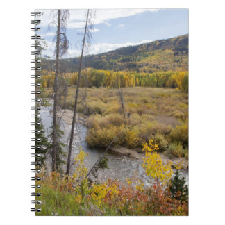 Provo River and aspen trees 5 Spiral Notebook