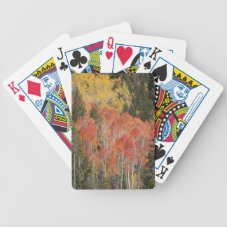 Provo River and aspen trees 6 Bicycle Playing Cards