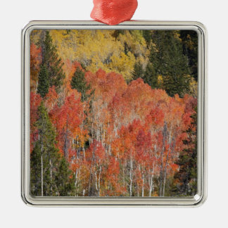 Provo River and aspen trees 6 Christmas Ornament
