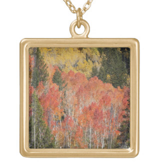 Provo River and aspen trees 6 Gold Plated Necklace