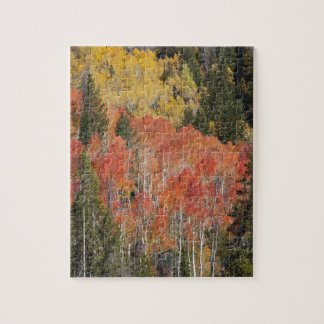 Provo River and aspen trees 6 Jigsaw Puzzle
