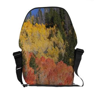 Provo River and aspen trees 6 Messenger Bag