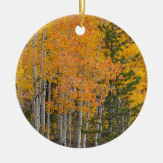 Provo River and aspen trees 7 Christmas Ornament