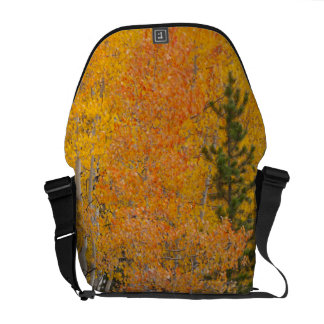 Provo River and aspen trees 7 Commuter Bag