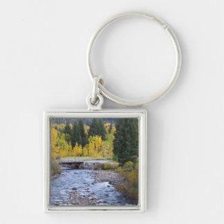 Provo River and aspen trees 8 Key Ring