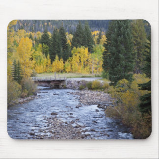 Provo River and aspen trees 8 Mouse Mat