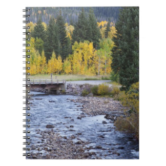 Provo River and aspen trees 8 Notebooks