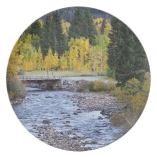 Provo River and aspen trees 8 Plate