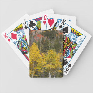 Provo River and aspen trees 9 Bicycle Playing Cards