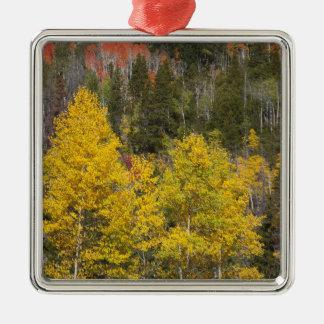 Provo River and aspen trees 9 Christmas Ornament