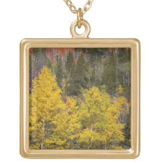 Provo River and aspen trees 9 Gold Plated Necklace