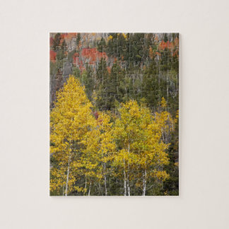 Provo River and aspen trees 9 Jigsaw Puzzle