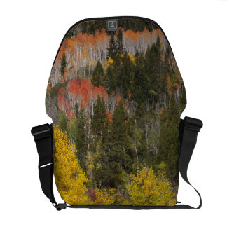Provo River and aspen trees 9 Messenger Bags