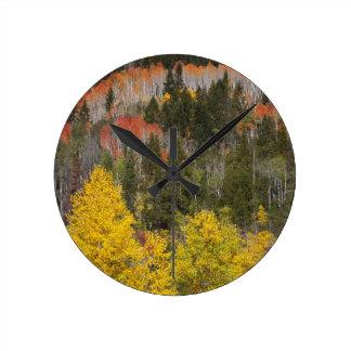 Provo River and aspen trees 9 Round Clock