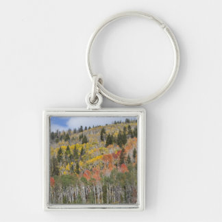 Provo River and aspen trees Key Ring
