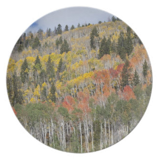 Provo River and aspen trees Plate