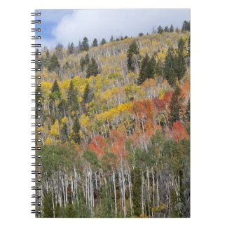 Provo River and aspen trees Spiral Notebook