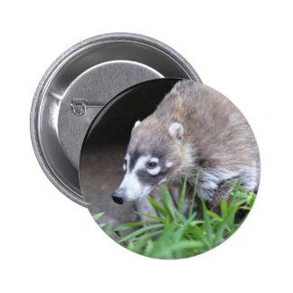 Prowling Coati 6 Cm Round Badge