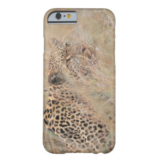 Prowling Leopard Hiding in Grassland Barely There iPhone 6 Case