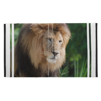 Prowling Lion iPad Folio Cases