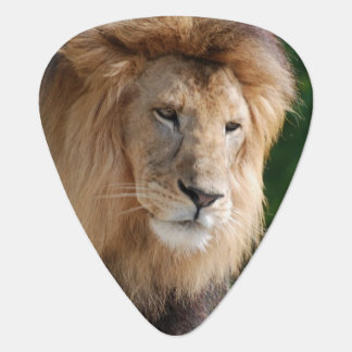 Prowling Lion Plectrum