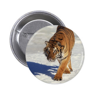 Prowling Tiger 6 Cm Round Badge