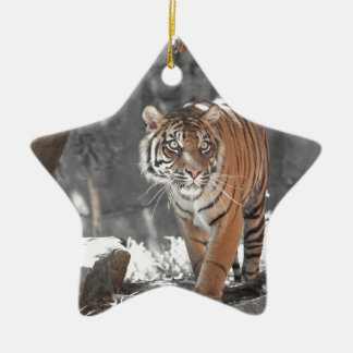 Prowling Tiger Ceramic Star Decoration