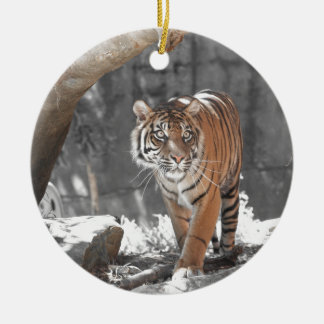 Prowling Tiger Round Ceramic Decoration
