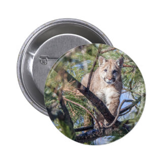 Prowling Wild Cat 6 Cm Round Badge
