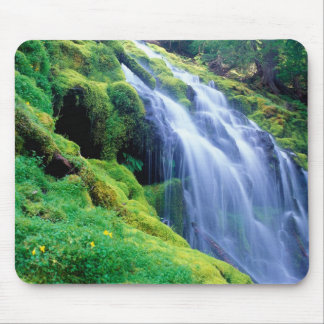 Proxy Falls in the central Oregon Cascades. Mouse Pad