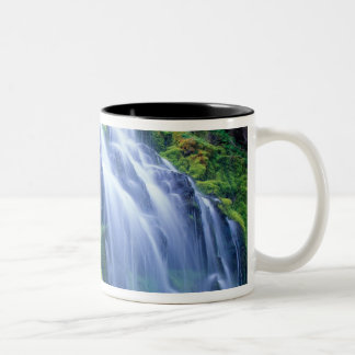 Proxy Falls in the central Oregon Cascades. Two-Tone Coffee Mug