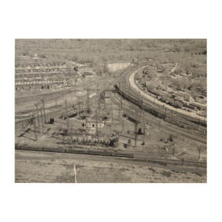 PRR Zoo Junction Wood Print