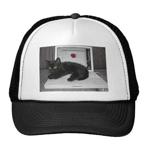 Prunella black cat lounging on laptop mesh hat